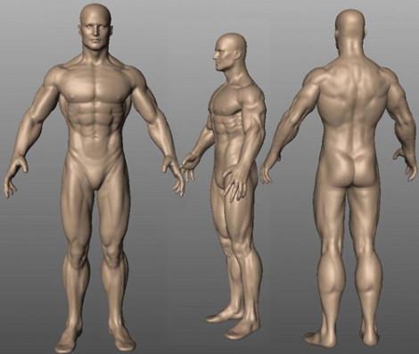 Super Anatomy Anatomical Study Mudbox 2006